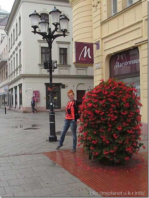 Красивые цветочные композиции на улицах Дьера