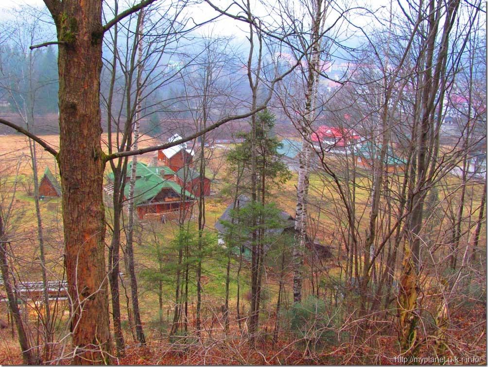 Хатинки серед лісу