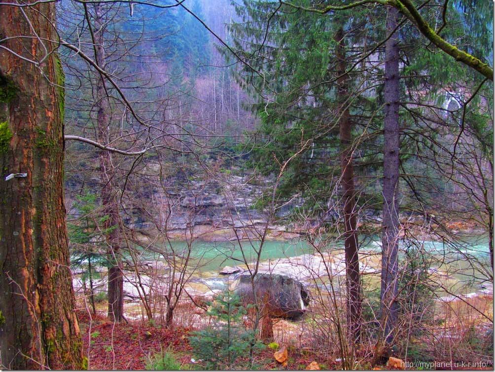 Гірська ріка серед дерев та скелястих берегів