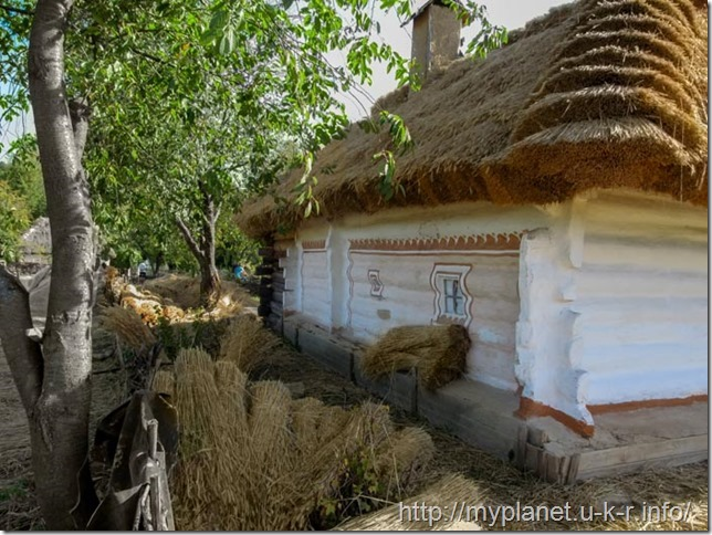 Straw sheaves prepared for roof repair