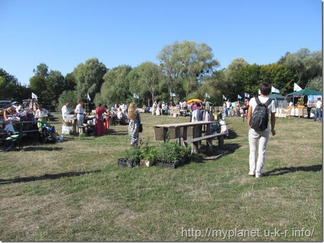 """An open-air fair on the """"Singers Field"""" in the Pirogovo Museum"""