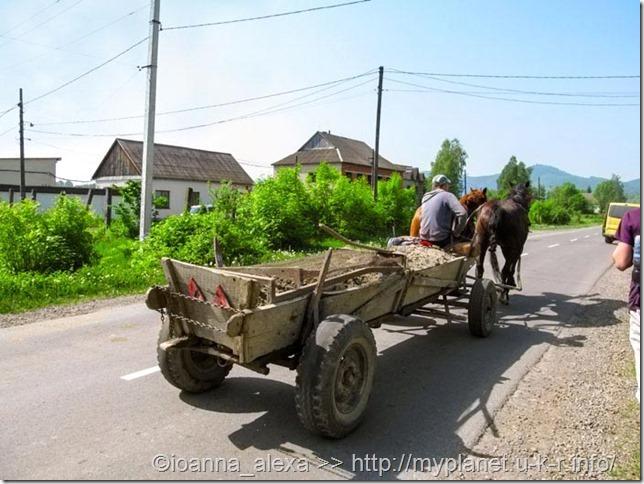 Лошадки везут тележку с какой-то грязью на улицах Хуста 