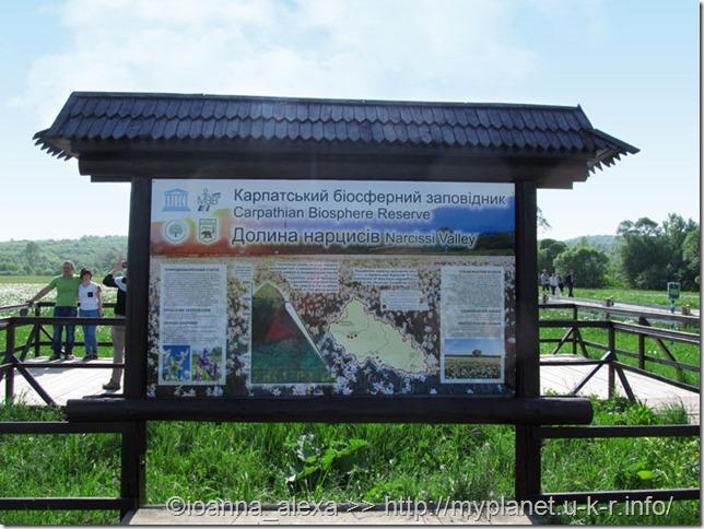 Стенд «Карпатский биосферный заповедник. Долина Нарциссов»