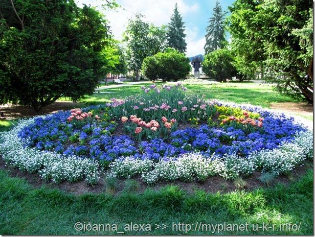 Большая круглая клумба с яркими с цветами в сквере Кошице