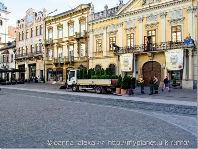 Коммунальные службы «озеленяют» улицы с помощью зелени в вазонах