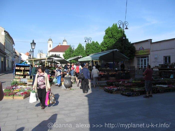 Вид на цветочный рынок в Кошице с другого ракурса