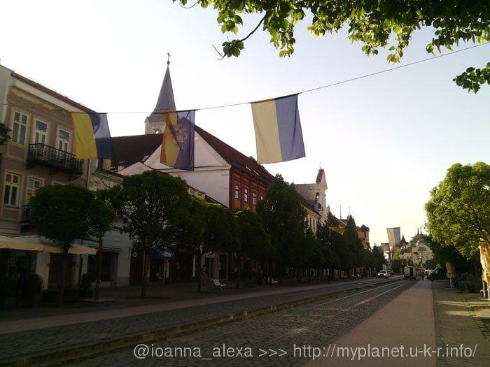 Украинские и Кошицкие флаги висят над дорогой вдоль улиц в центре Кошице