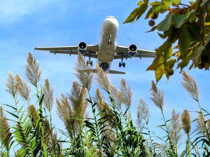 Самолет приземляется в аэропорте Эль-Прат (Барселона)