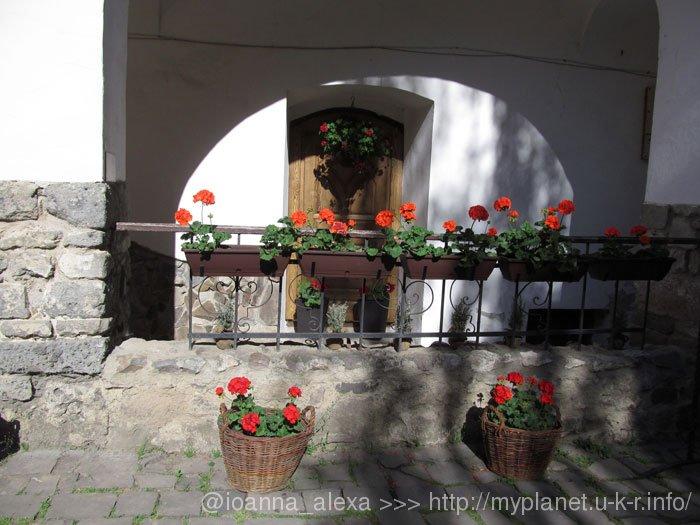 Герань в вазонах украшает двор