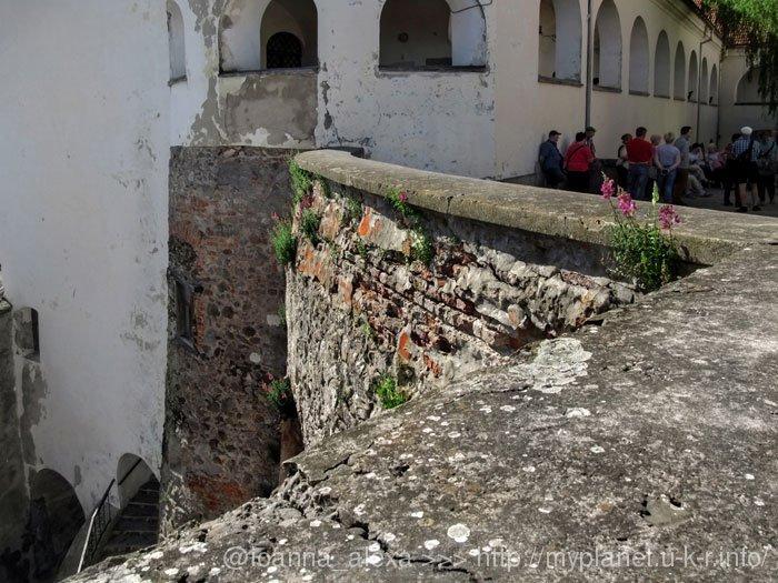 Красивые цветы растут на стене средневекового замка