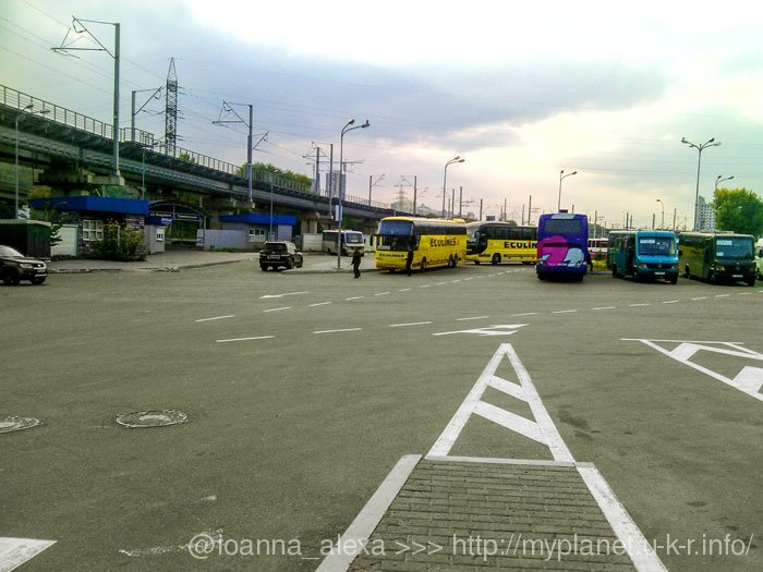 В очікуванні свого автобуса на платформі автостанції Видубичі спостерігаю за автобусами
